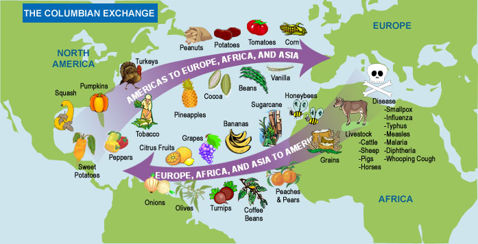 Columbian exchange clipart image royalty free download The Columbian Exchange was the widespread transfer of ani... image royalty free download
