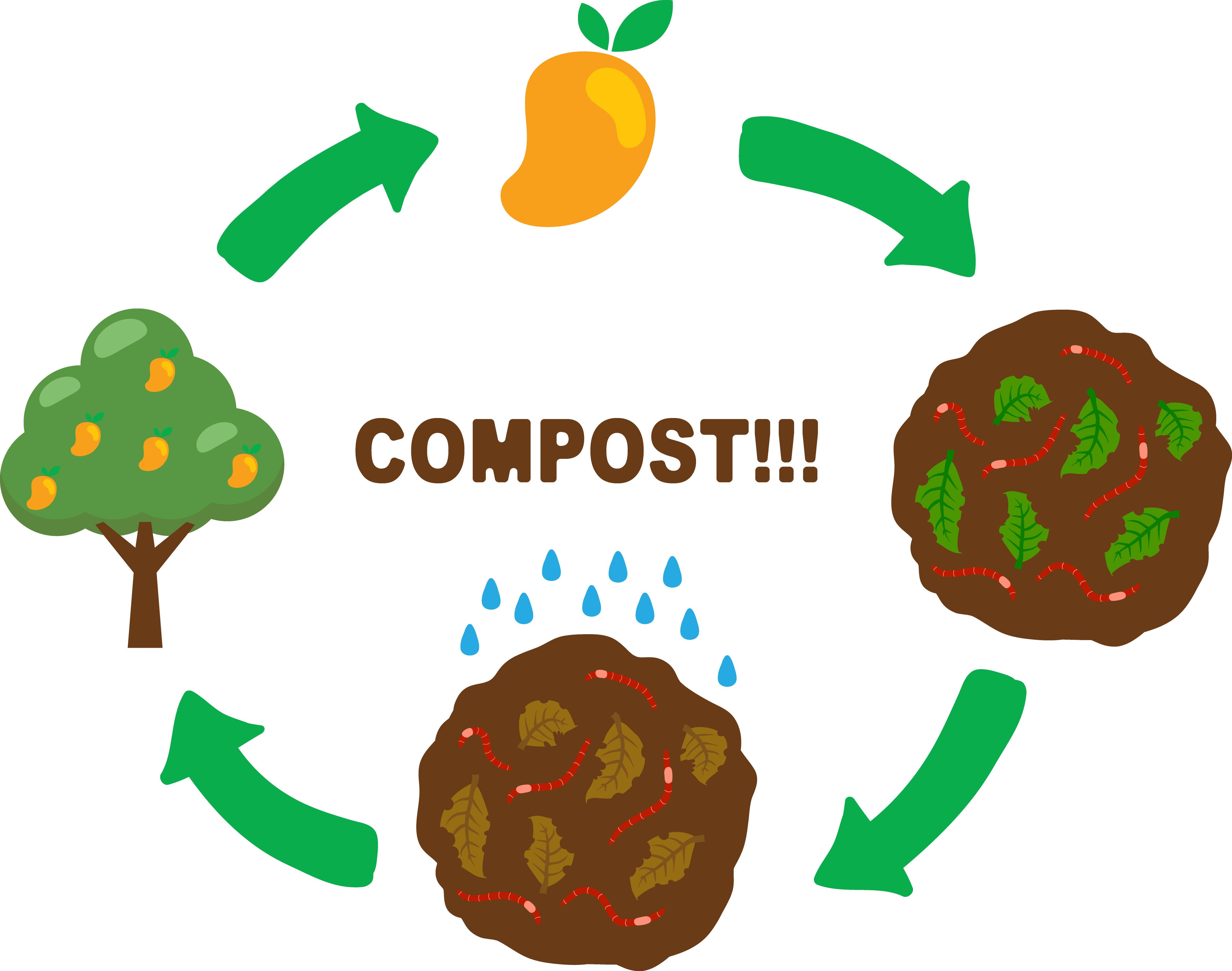 Green compost apple clipart transparent library Compost Soil Clip art - Grow mango trees 4811*3791 transprent Png ... transparent library