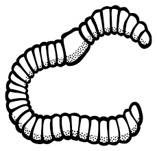 Composting worms clipart black and white image free stock Image result for black and white clip art of earth worm   pictures ... image free stock