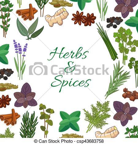 Condimentos clipart picture free stock picante, cartel, hierbas, vector, condimentos, especias picture free stock