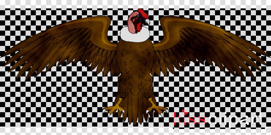 Condors clipart vector freeuse library Coat Cartoon clipart - Bird, Eagle, Wing, transparent clip art vector freeuse library