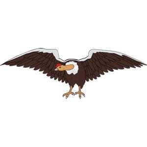 Condors clipart clip art free library Condor 3 clipart, cliparts of Condor 3 free download (wmf, eps, emf ... clip art free library