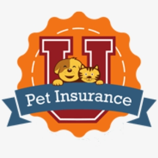 Congenial clipart clip art royalty free download Insurance PNG Images | PNG Cliparts Free Download on SeekPNG , Page 5 clip art royalty free download