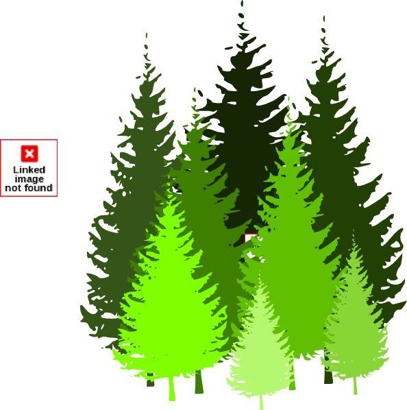 Pine tree clipart transparent background banner royalty free download Conifer Tree Clipart banner royalty free download