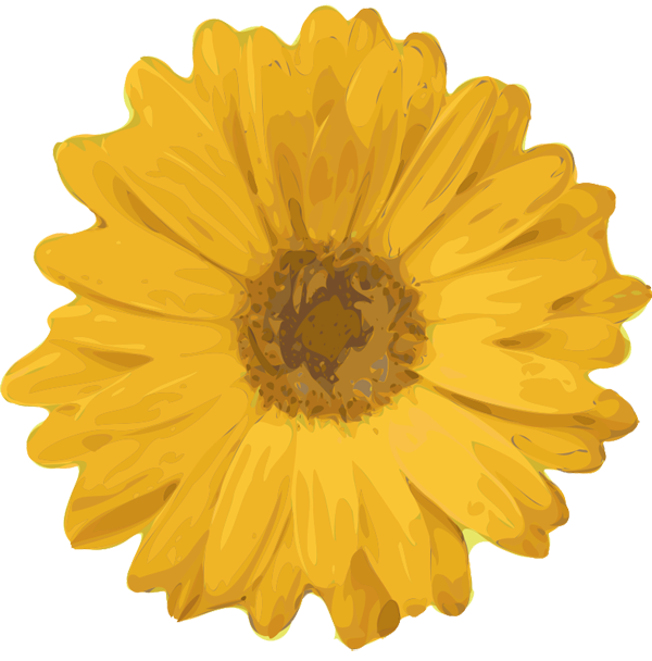 Marigold flower clipart clipart library library Image - Flower clipart.png | The Perks of Being a Wallflower Wiki ... clipart library library