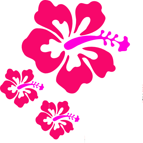 Coral flower clipart picture royalty free library Coral Hibiscus Clip Art at Clker.com - vector clip art online ... picture royalty free library