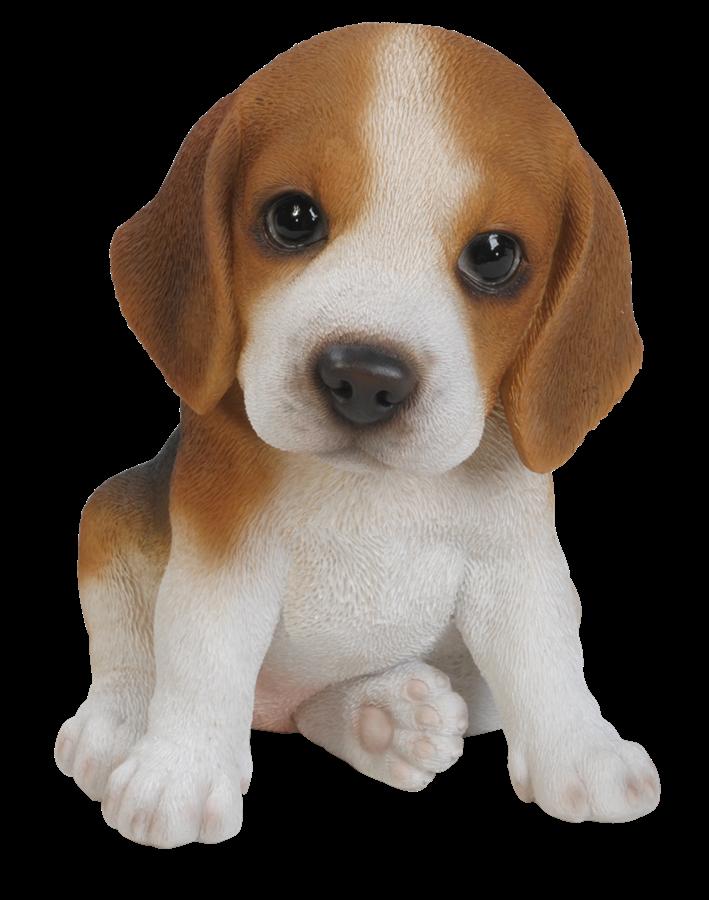 Corgi pumpkin clipart clipart transparent download Pet Pals Beagle Puppy - Resin Garden Ornament | Pinterest | Cake clipart transparent download