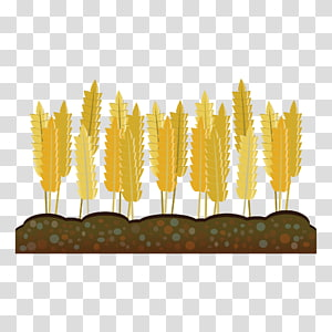 Corn harvest clipart clip art library library Crop Farm Agriculture , Ear Of Corn transparent background ... clip art library library