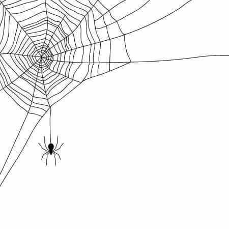 Corner spider web clipart jpg library download Free Spider Web Clipart - Clipart Junction jpg library download