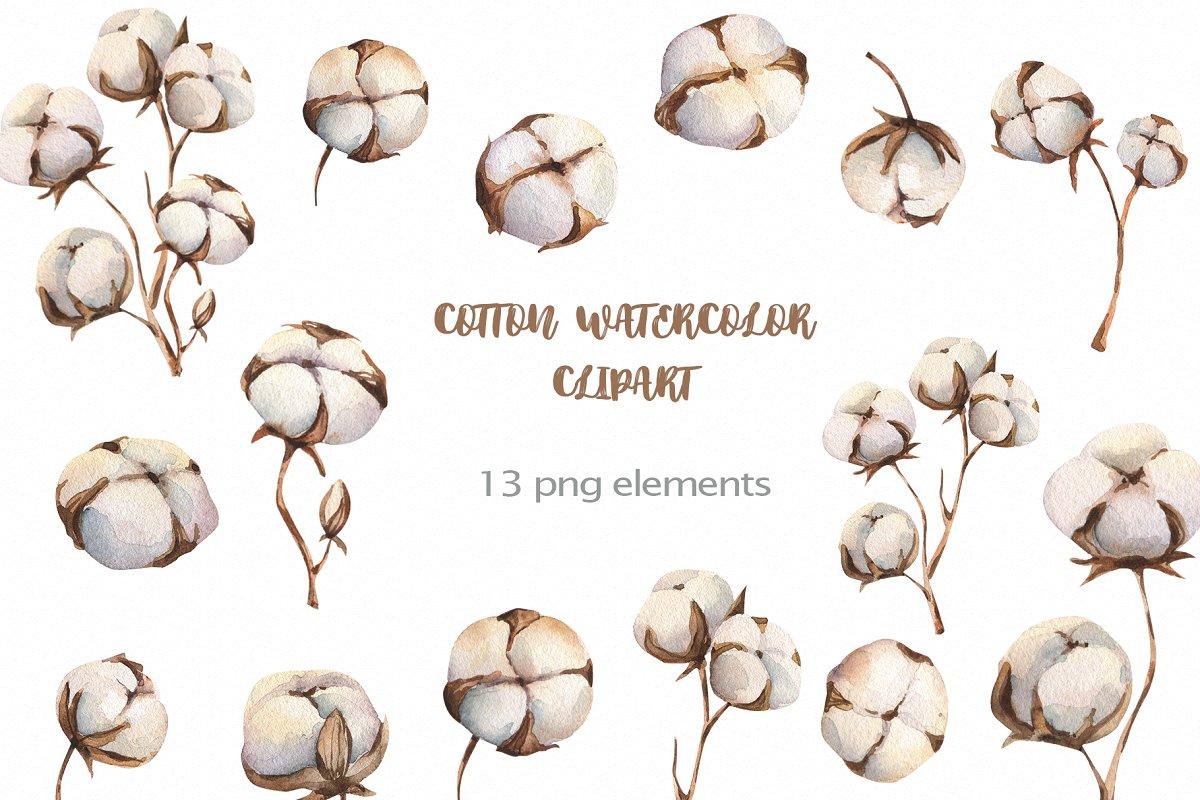Cotton fiber cliparts clip royalty free library Watercolour Cotton clipart ~ Illustrations ~ Creative Market clip royalty free library