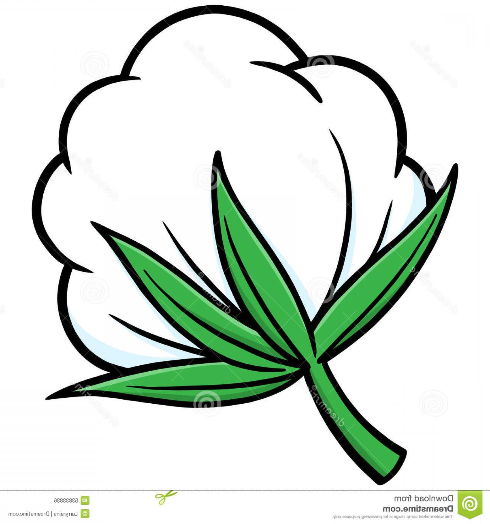 Cotton plant clipart clip art royalty free download Stock Illustration Cotton Vector Illustration Some Image   SOIDERGI clip art royalty free download