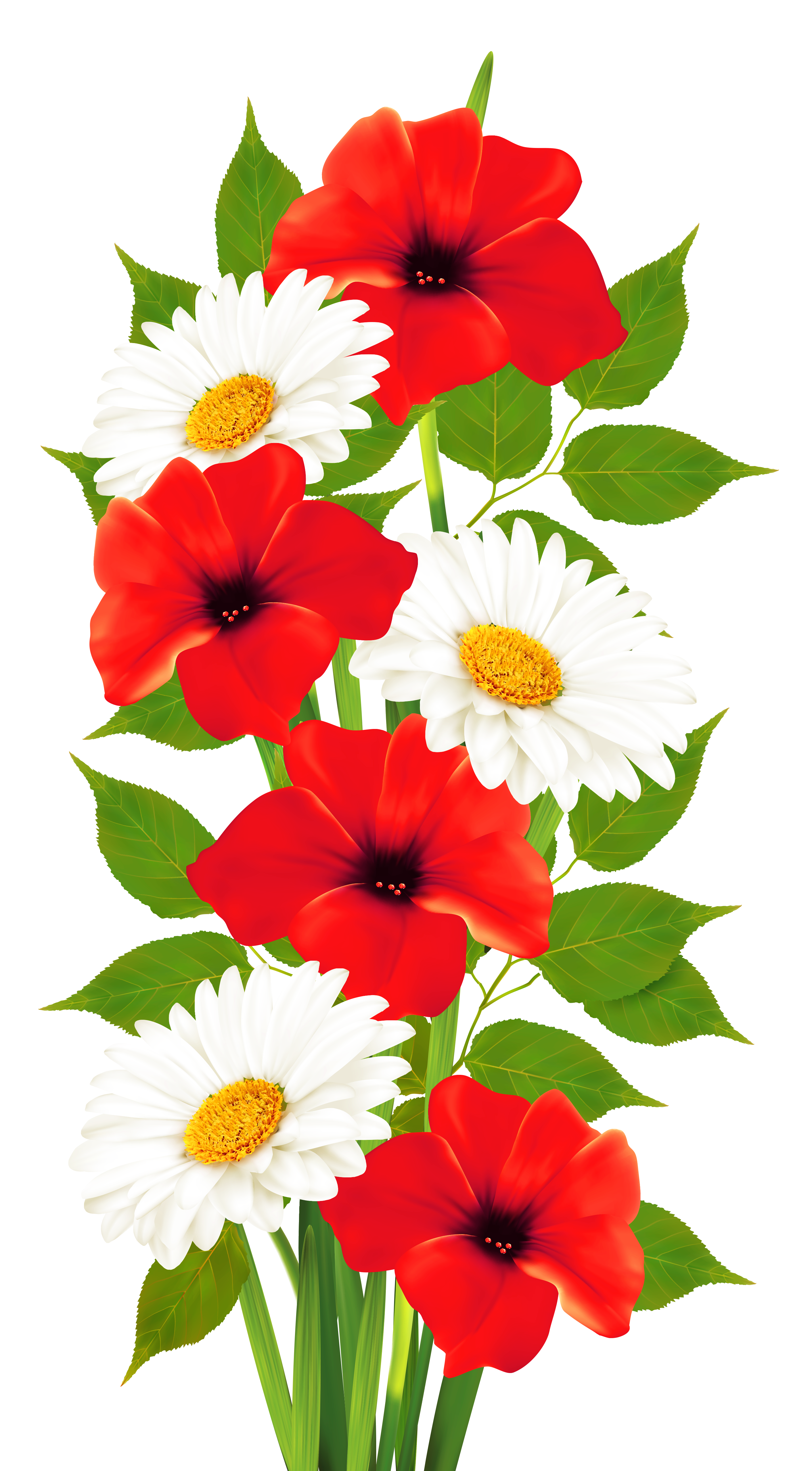 Poppy flower clipart png free Poppies and Daisies Transparent PNG Clipart | Цветы | Pinterest ... png free