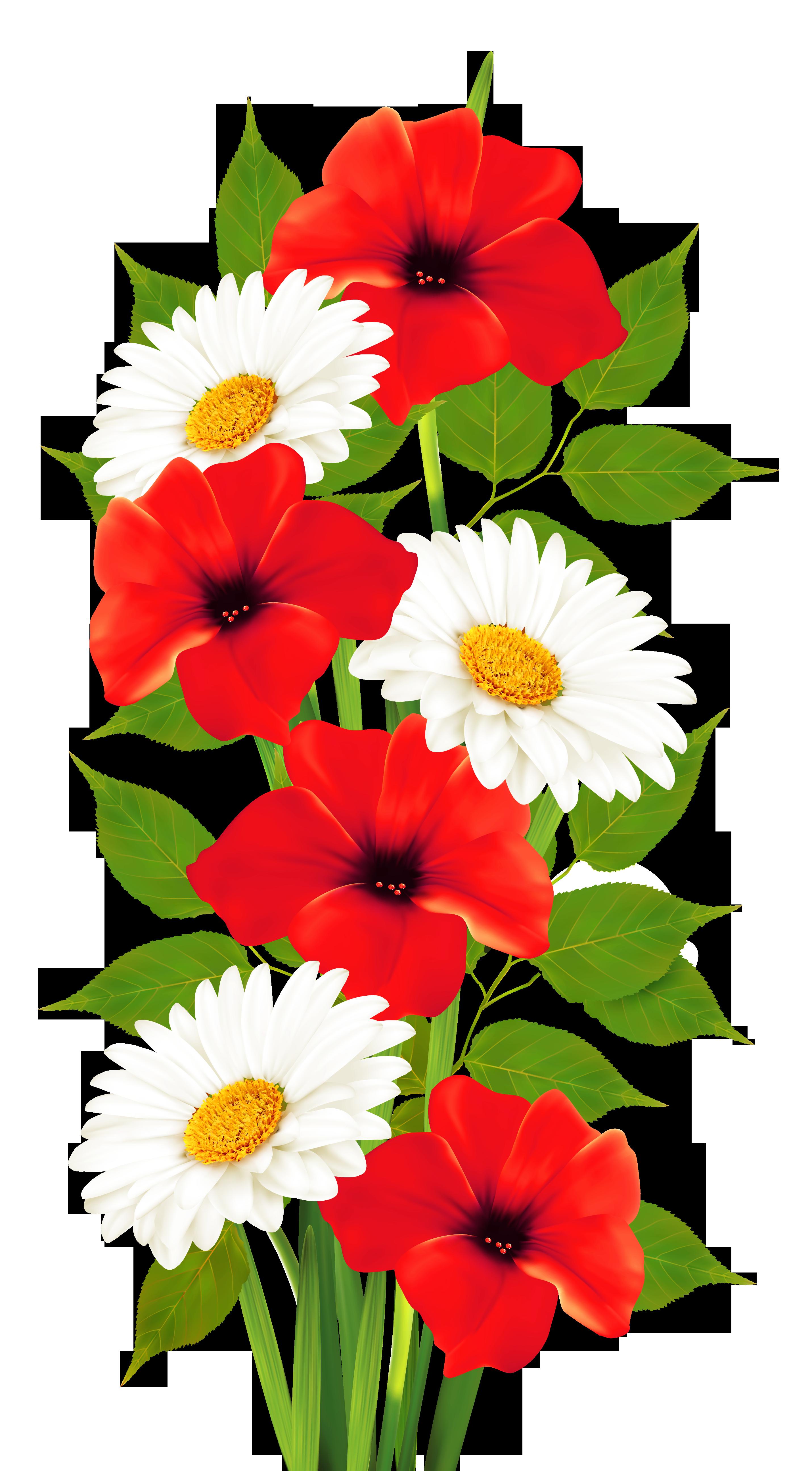 Country flower clipart clip art transparent Poppies and Daisies Transparent PNG Clipart | Цветы | Pinterest ... clip art transparent