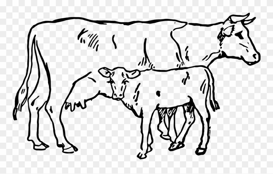 Indian cow clipart image free library Beef Vector Cow Indian Clip Royalty Free Download - Cow And Calf ... free library