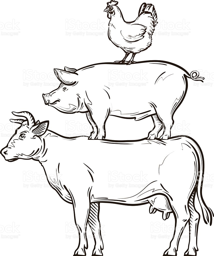 Cow and chicken clipart black and white free png freeuse Pig Chicken Cow Clipart png freeuse