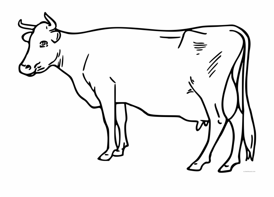 Clipart black and white cow black and white download Black And White Cow Clipart - Transparent Cow Clipart Black ... black and white download