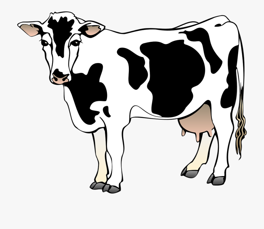 Cow clipart transparent graphic royalty free download Cow 4 Small Clipart 300pixel Size, Free Design - Cow Clipart ... graphic royalty free download