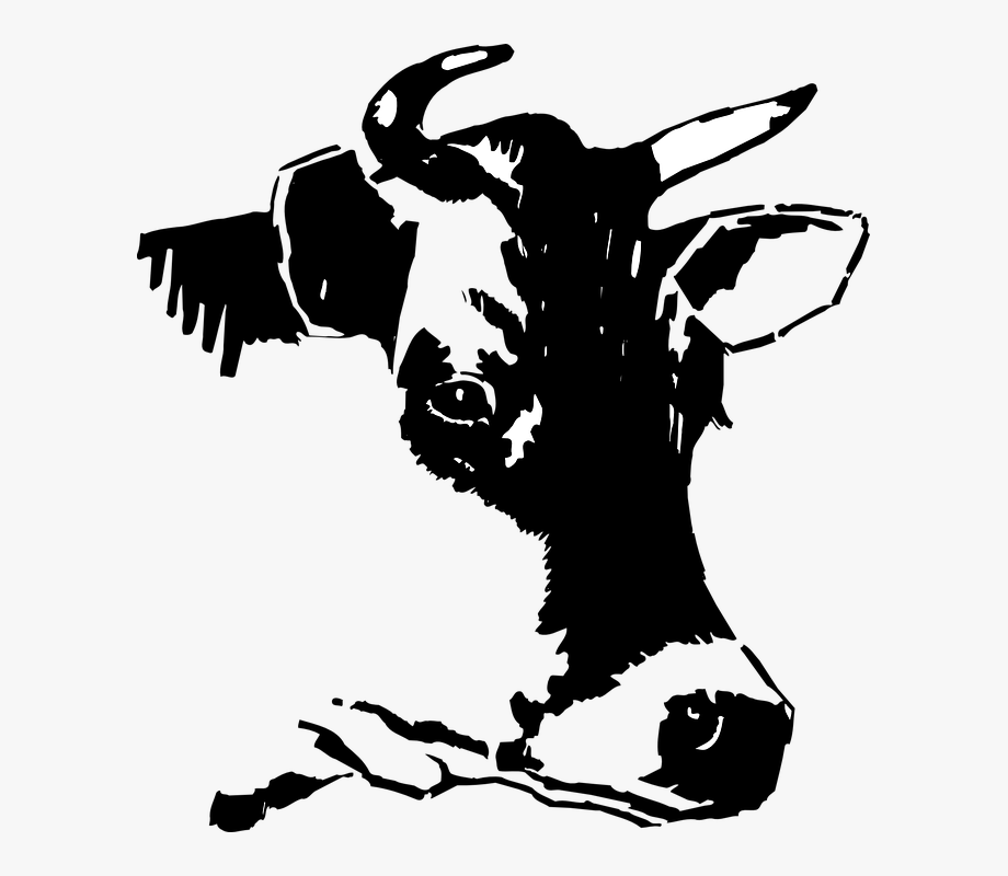 Cow head clipart black and white picture free Cow, Head, Face, Dairy, Livestock - Cow Head Clipart Black And White ... picture free