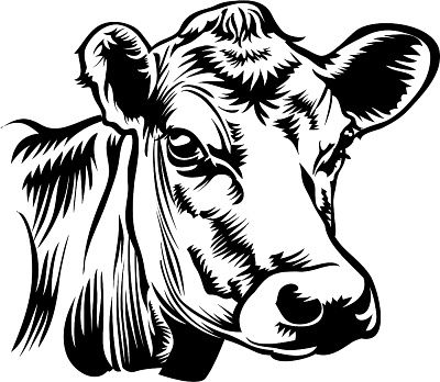 Cow head clipart black and white banner freeuse library Cow Head Clipart Black And White | Free download best Cow Head ... banner freeuse library