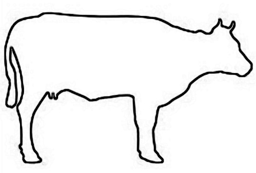 Cow outline clipart image freeuse stock Free Outline Of A Cow, Download Free Clip Art, Free Clip Art ... image freeuse stock