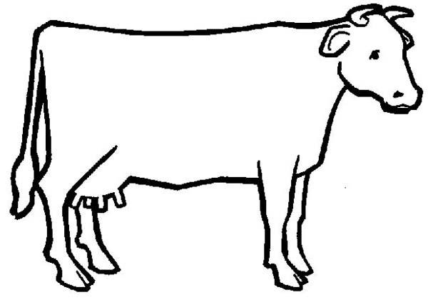 Cow outline clipart transparent Free Outline Of A Cow, Download Free Clip Art, Free Clip Art ... transparent