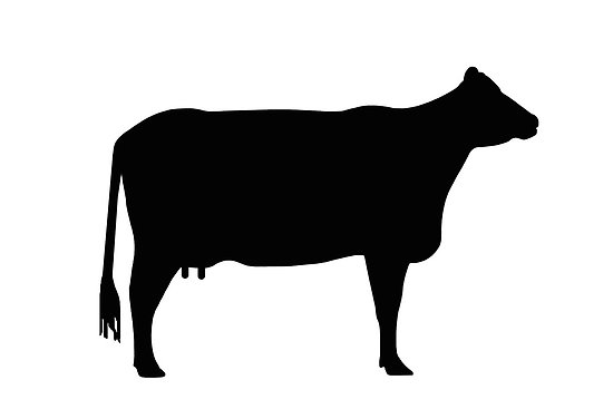 Cow silhouette clipart free png free download Free Cow Silhouette, Download Free Clip Art, Free Clip Art on ... png free download
