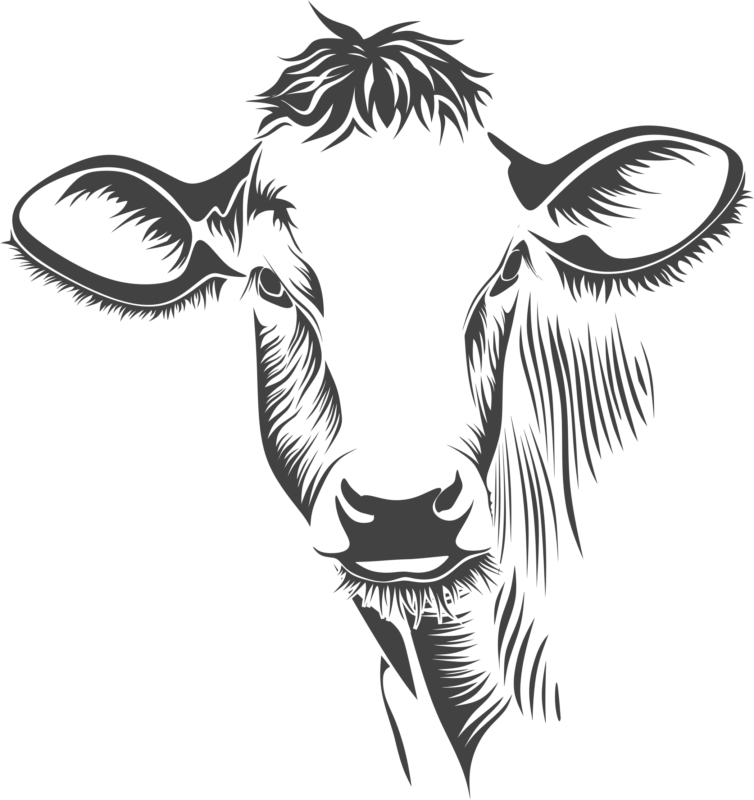 Cow with baseball clipart vector free download Free Cow Clipart Black And White Images Download【2018】 vector free download