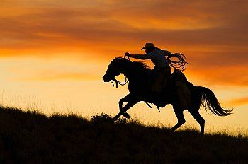 Cowboy and his horse looking out over the sunset clipart vector download Silhouette of cowboy riding horse against sunset sky. | Horses ... vector download