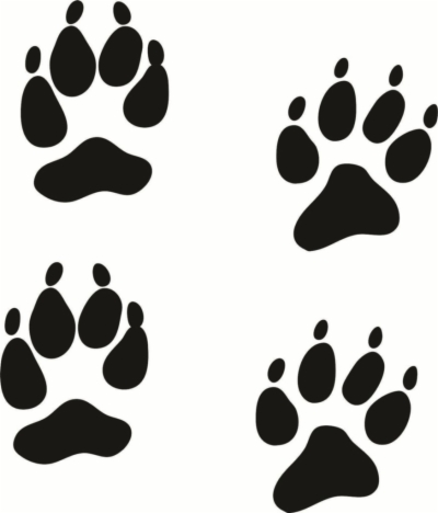 Coyote paw print clipart vector download paw print trail , Free png download - requitix.io vector download
