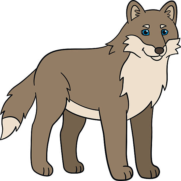 Coyotte clipart freeuse download Coyote Clipart | Free download best Coyote Clipart on ClipArtMag.com freeuse download
