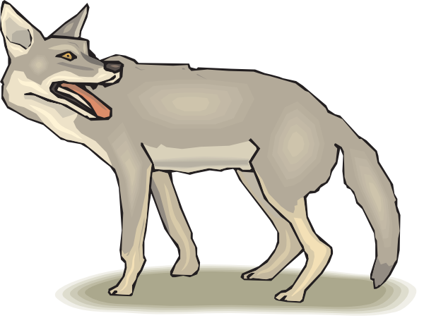 Coyotte clipart vector transparent stock Free Coyote Cliparts, Download Free Clip Art, Free Clip Art on ... vector transparent stock