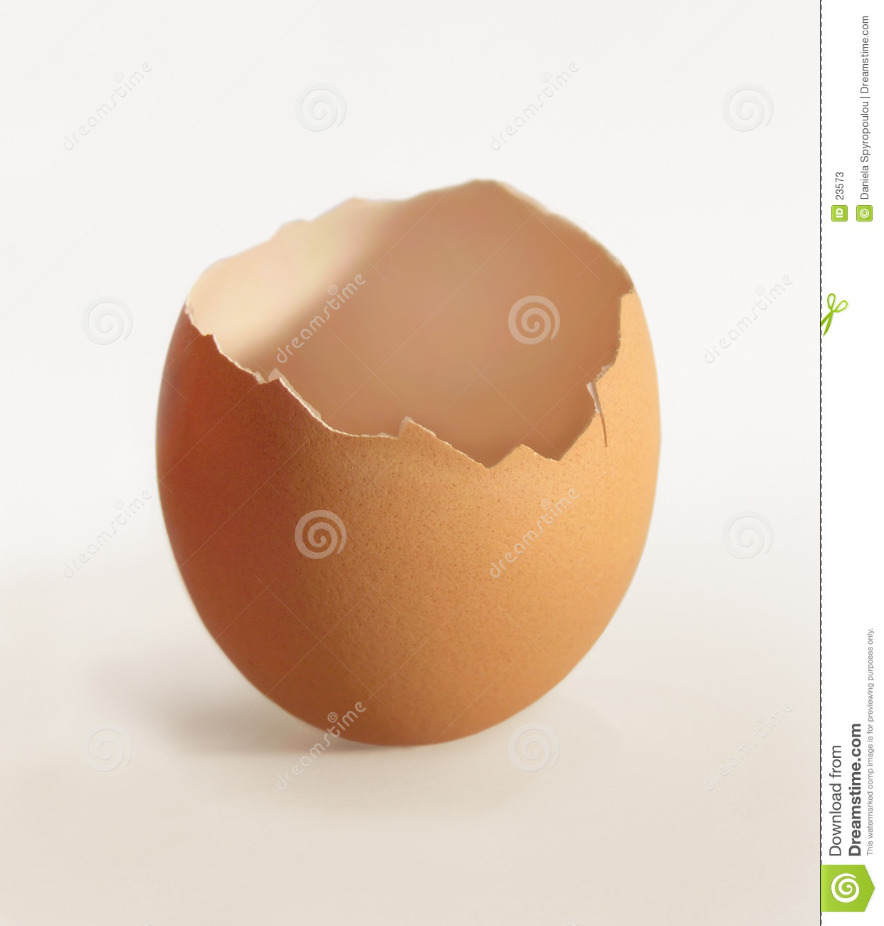 Cracked egg shell clipart image black and white download Cracked Eggshell Clipart - filexo image black and white download