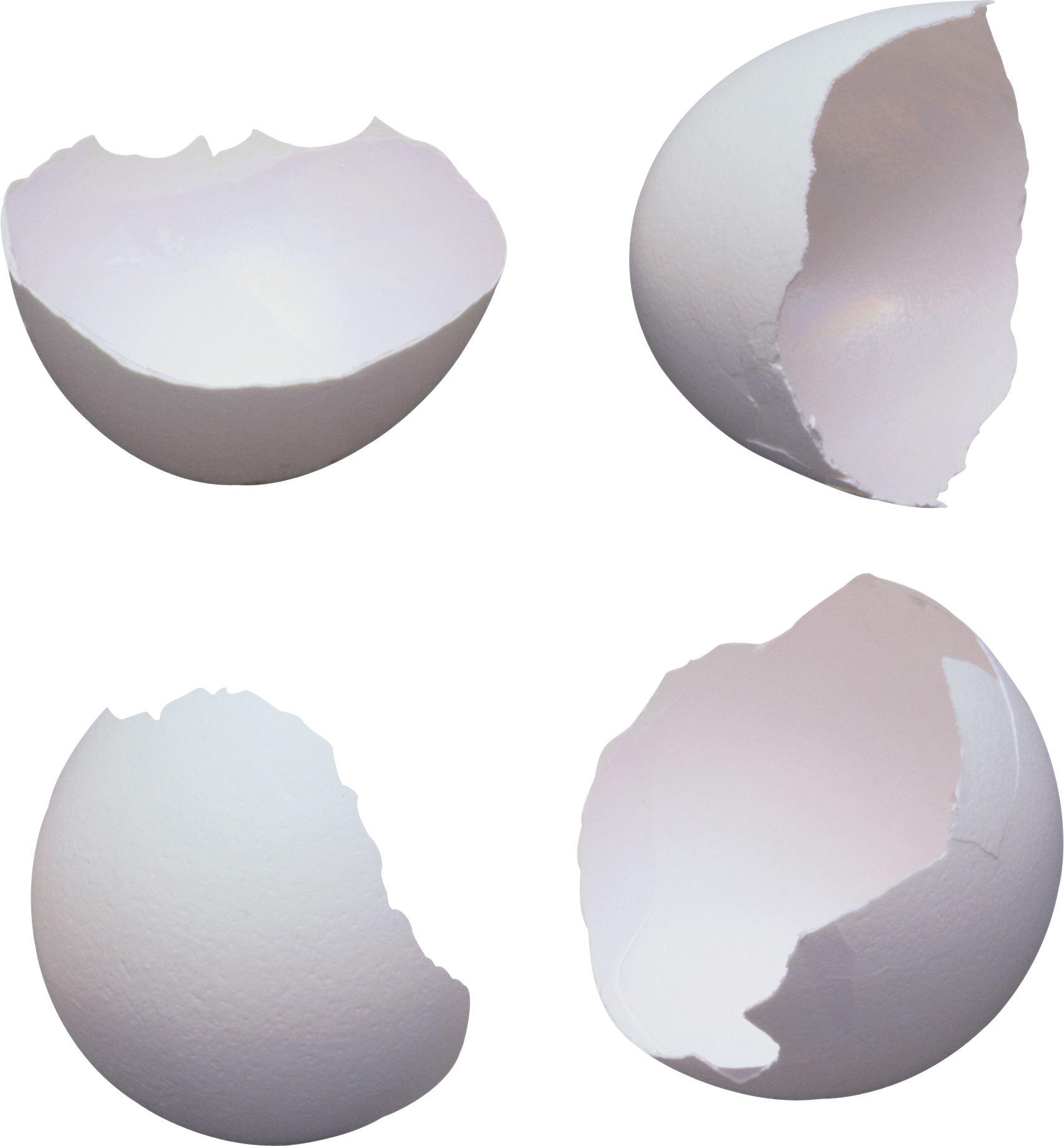 Cracked egg shell clipart svg black and white Eggs PNG Image - PurePNG | Free transparent CC0 PNG Image Library svg black and white