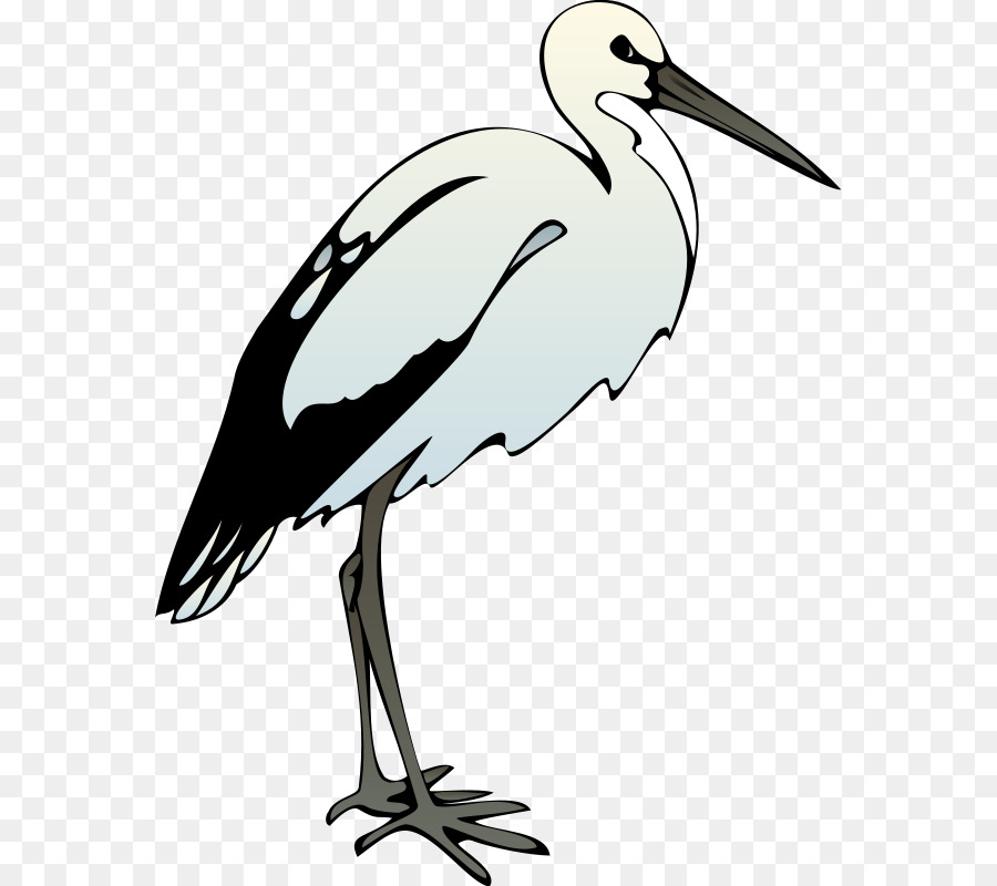 Crane bird clipart image Crane Bird png download - 619*800 - Free Transparent Bird png Download. image