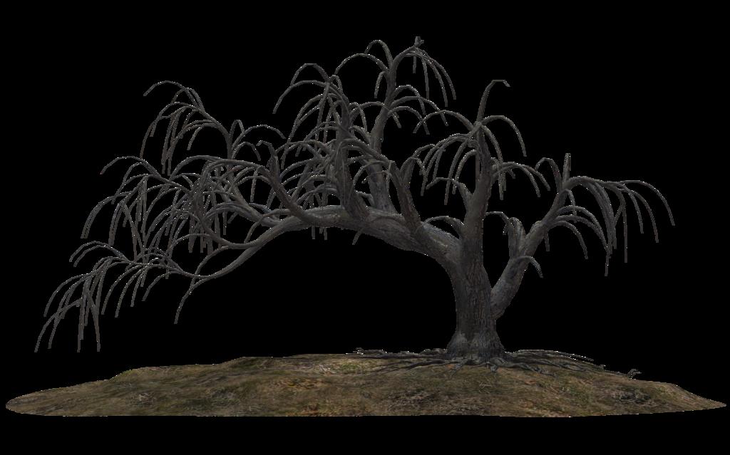 Scary tree clipart jpg transparent Creepy Tree 19 by wolverine041269.deviantart.com on @DeviantArt ... jpg transparent