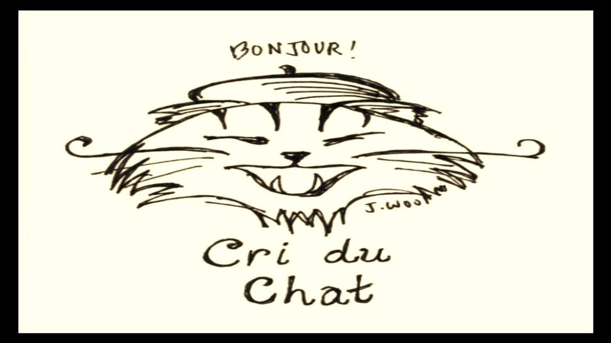 Cri du chat picture black and white clipart png transparent Cri Du Chat png transparent