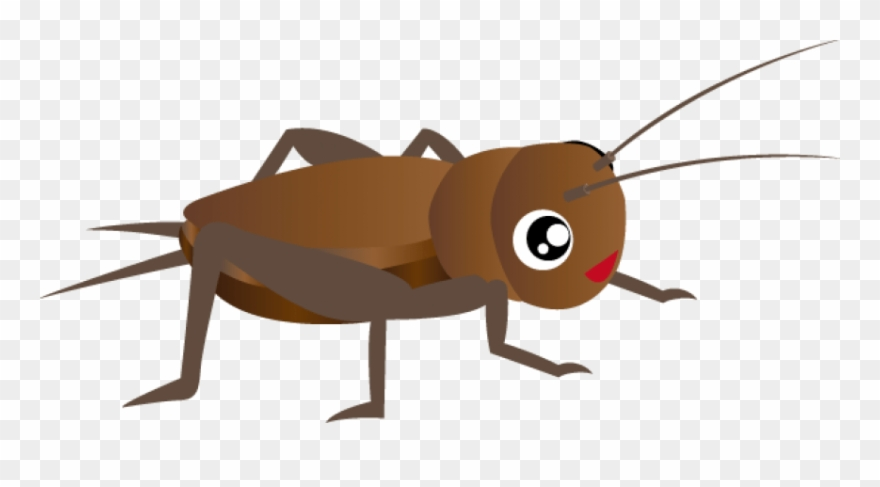 Cricket bug clipart jpg royalty free download Free Cricket Insect Clipart Images Transparent Png - コオロギ ... jpg royalty free download