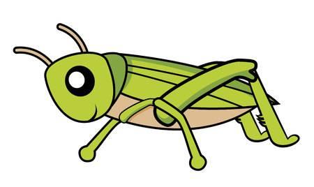 Cricket bug clipart image transparent Cricket insect clipart 8 » Clipart Station image transparent