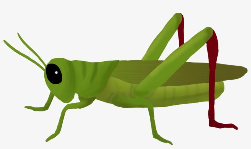 Cricket bug clipart svg free download Svg Transparent Clipart Cricket Insect - Grasshopper Png - Free ... svg free download