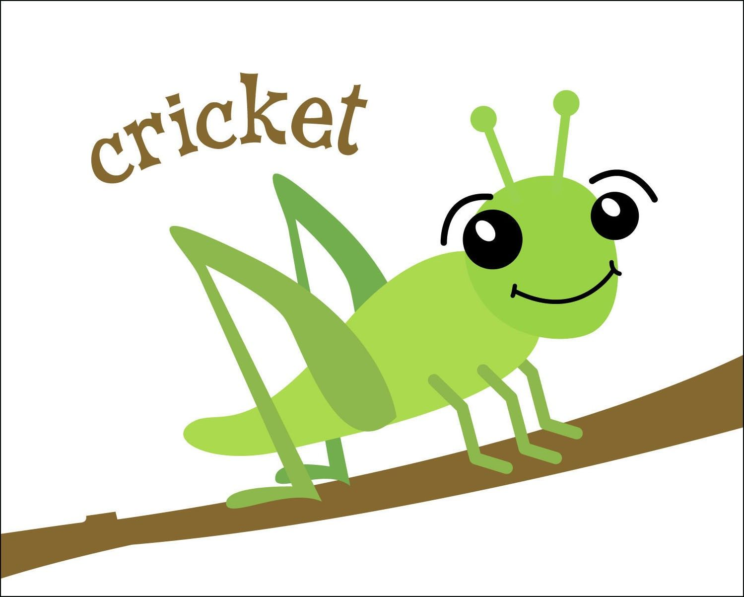 Cricket bug clipart clipart transparent library Crickets are annoying, whether in garden or home, and hiring an ... clipart transparent library