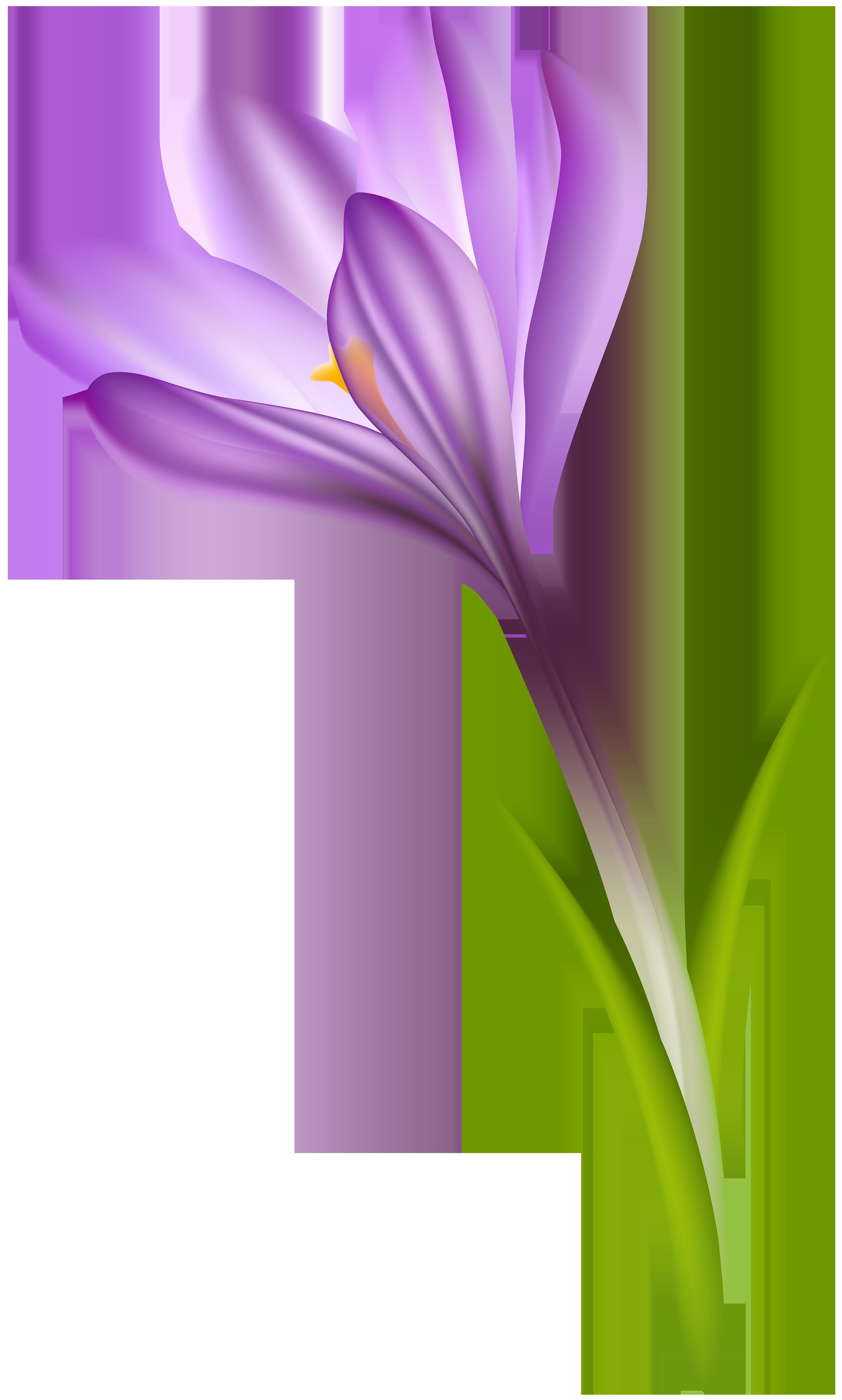 Crocus clipart free clipart royalty free download Purple Crocus Transparent PNG Clip Art Image | Gallery Yopriceville ... clipart royalty free download