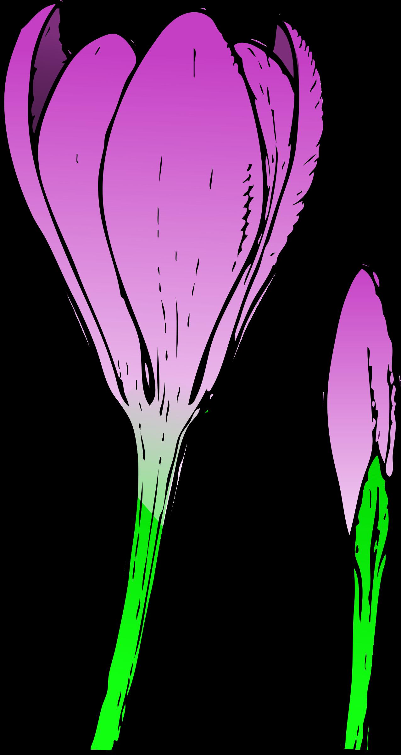 Crocus flower clipart svg freeuse stock Clipart - colored crocus 1 svg freeuse stock