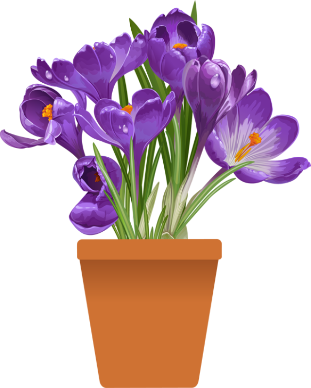 Crocus flower clipart vector library library Clip Art of beautiful plants for the spring garden | Pinterest ... vector library library