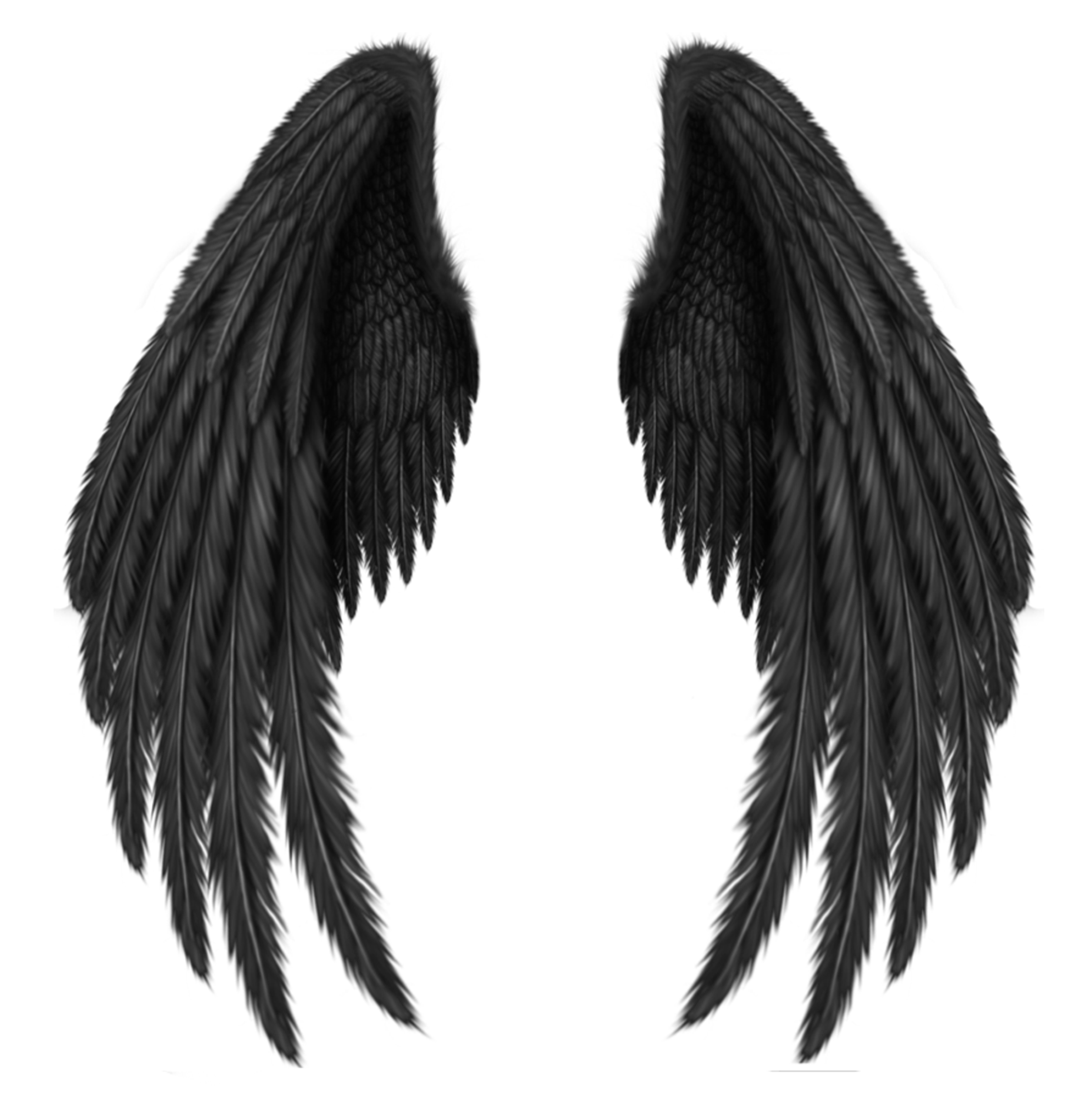 Transparent black png picture. Cross and wings clipart