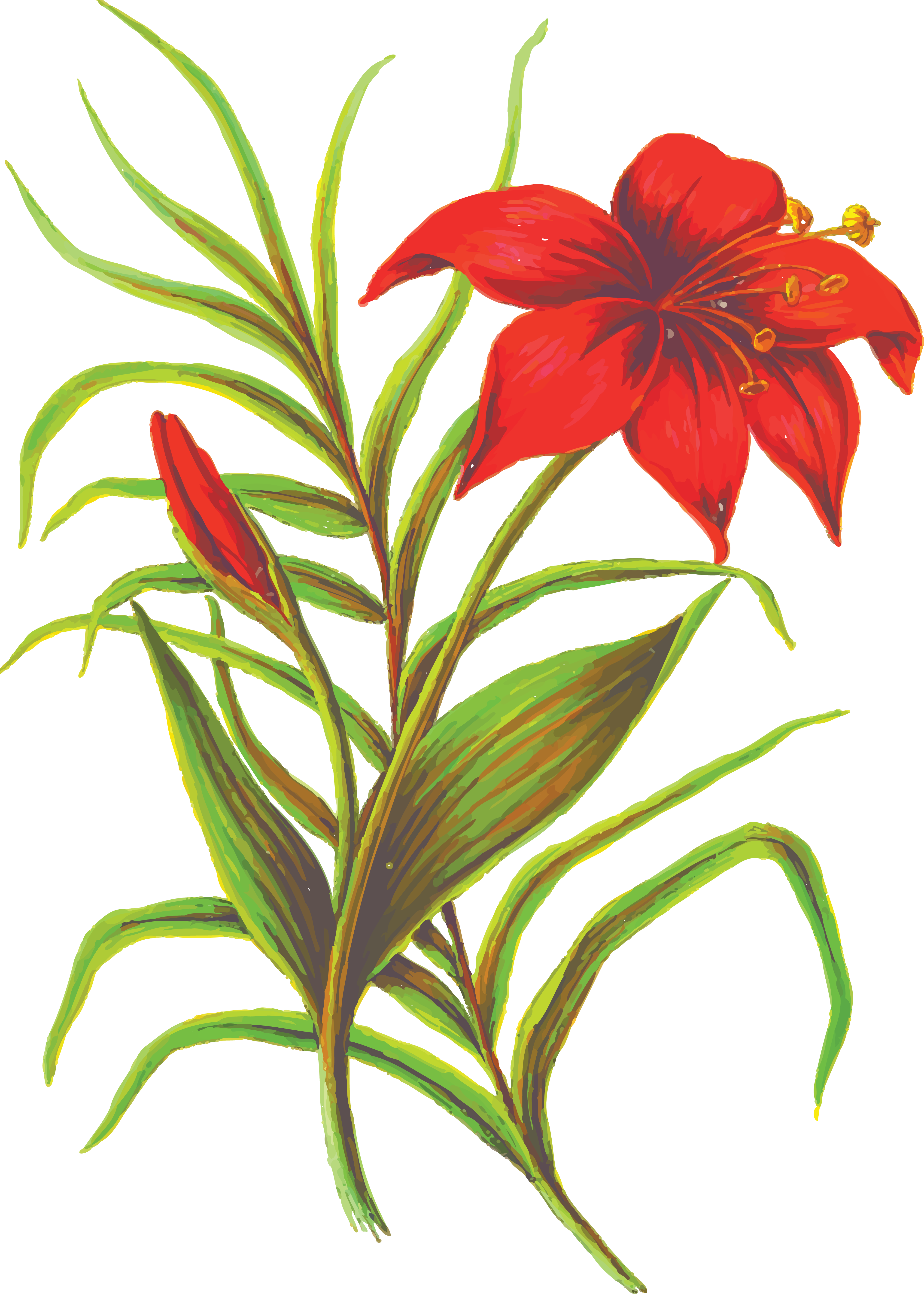 Cross lilies clipart svg royalty free download Lily clipart resurrection #2248343 - free Lily clipart resurrection ... svg royalty free download