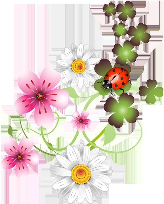 Cross vine flowers clipart clip freeuse stock fleurs,flores,flowers,bloemen,png | Art~Flower Power | Pinterest ... clip freeuse stock