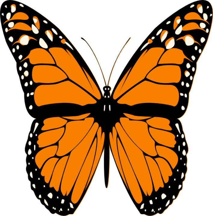 Cross with butterfly clipart clip art download BUTTERFLY CLIP ART | CLIP ART - BUTTERFLY - CLIPART | Pinterest ... clip art download
