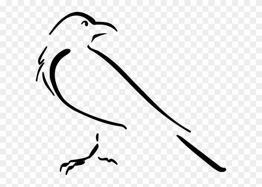 Crow outline clipart vector free download Crow Outline Clipart (#1492271) - PinClipart vector free download