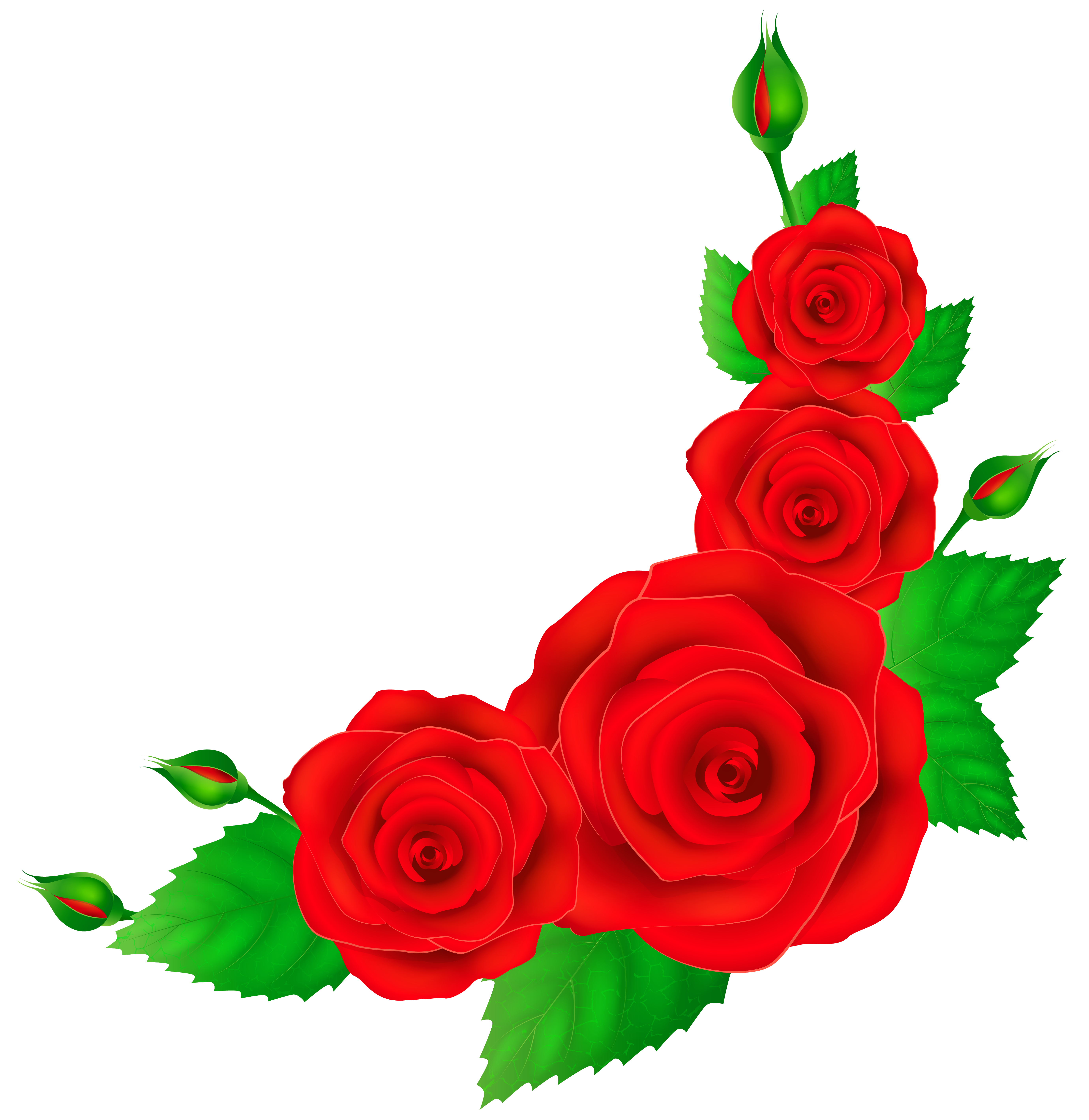 Crown of roses clipart clipart freeuse download 28+ Collection of Roses Clipart Corner | High quality, free cliparts ... clipart freeuse download