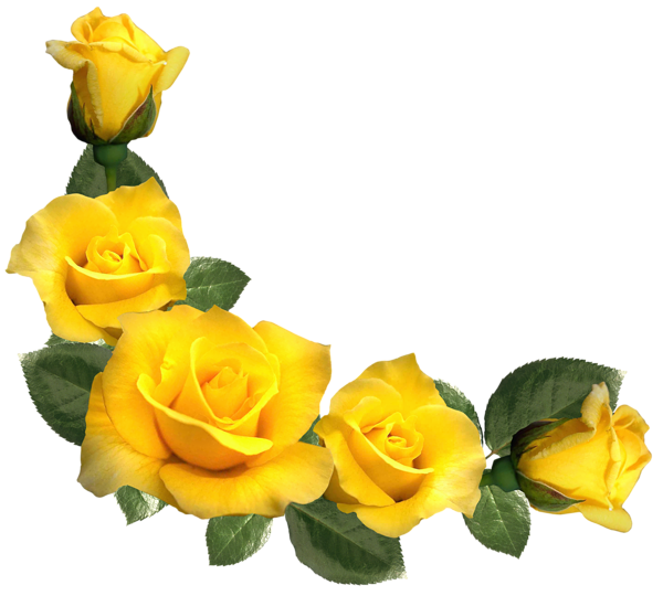Beautiful yellow decor png. Crown of roses clipart